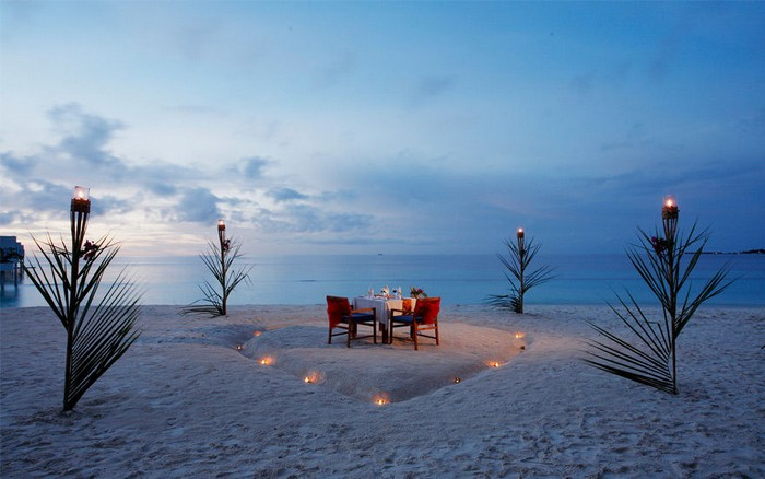 Sunbird Dreaming about romantic dinner on the beach custom pic 1